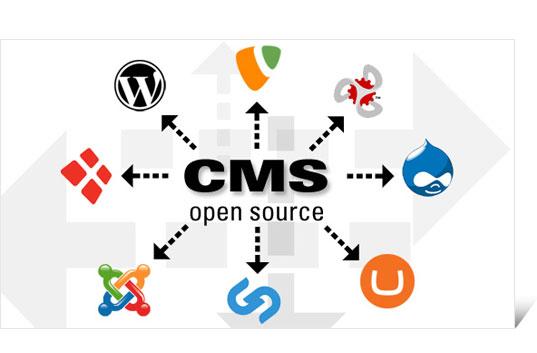 Logos CMS Systeme